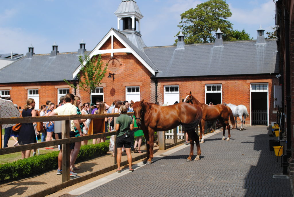 Horses on Rothschild Yard at NHRM