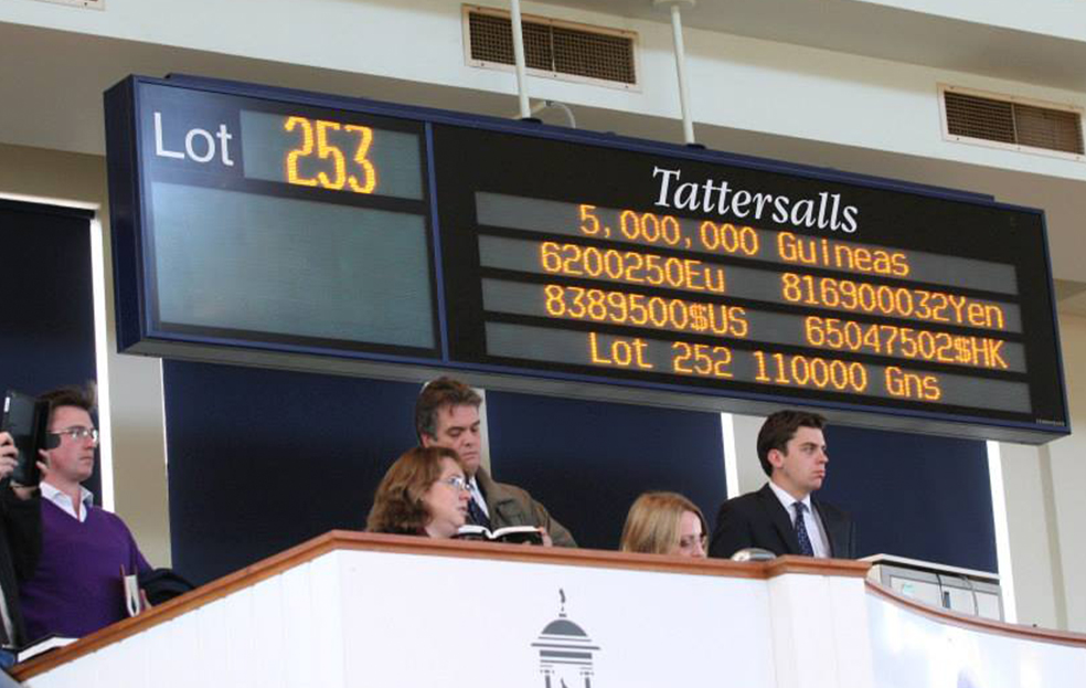 Tattersalls-Scrolling5-new
